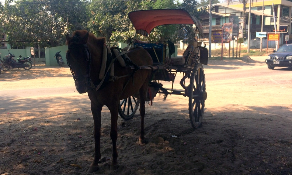 horse cart transportation Bagan Myanmar