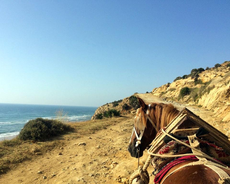 A Quick Travel Guide To Asilah, Moroccos Hidden Seaside Town