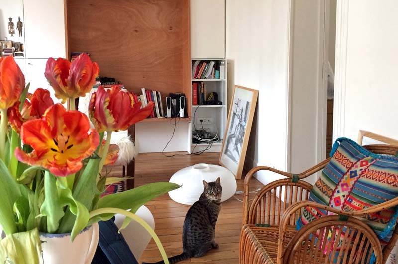 housesitting in Belleville, Paris