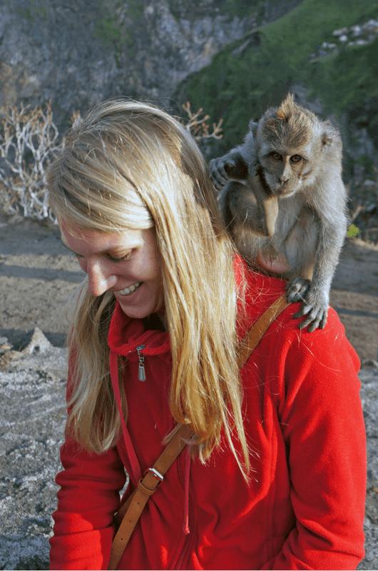 Cheeky Monkey on Mount Batur Bali