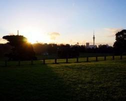 Auckland Domain Sunset